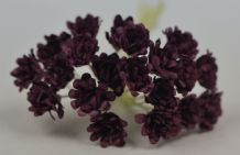 PURPLE WINE GYPSOPHILA / FORGET ME NOT Mulberry Paper Flowers